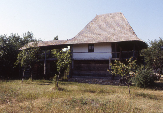 coltescu house