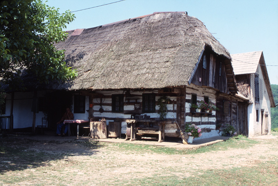 Traditional Dwelling1