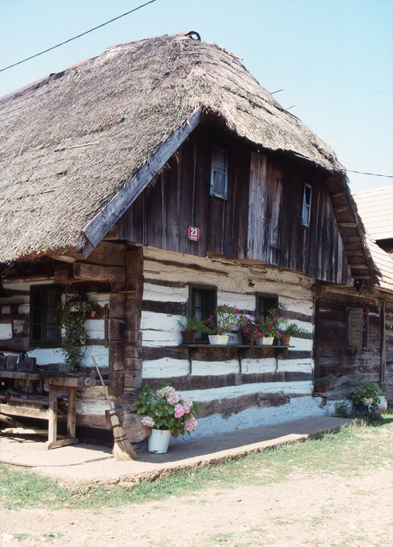 Traditional Dwelling2