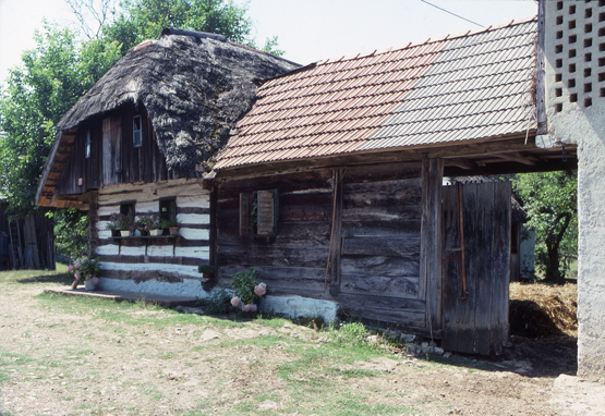 Traditional Dwelling3